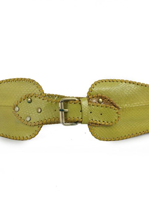 Mesalina Snake Yellow